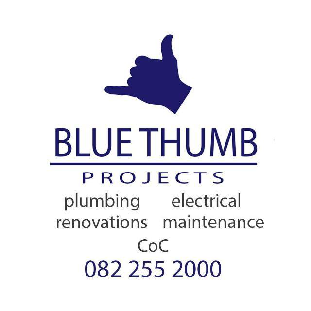 Blue Thumb Plumbing and Projects