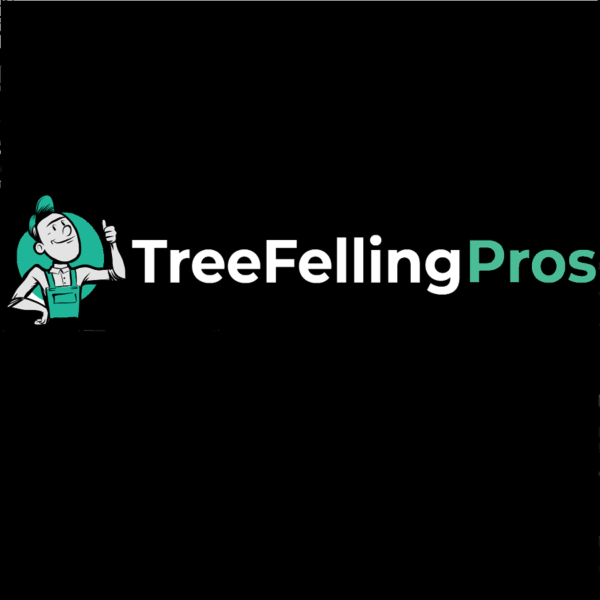 Tree Felling Pros Somerset West Strand